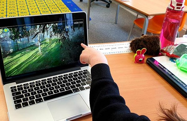 Child on virtual school trip