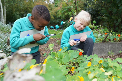 Children learning outdoors