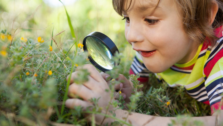 Ways to Continue Outdoor Learning At Home